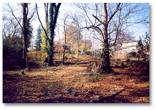 """""""The Woods"""" in the process of clearing and clean-up, 1994-1998."""