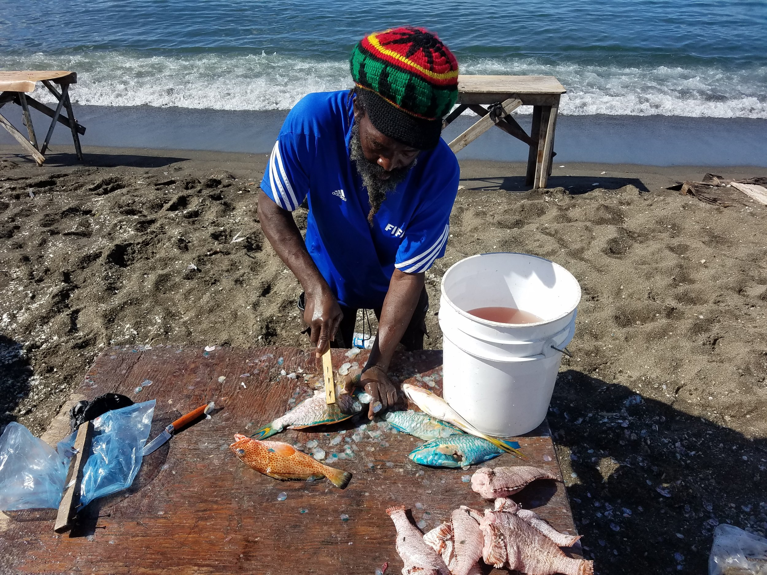 Fish cleaning in St. Kitts.jpg