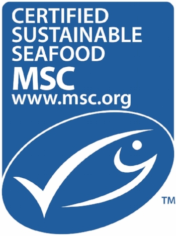 msc_new_logo_vertical.jpg