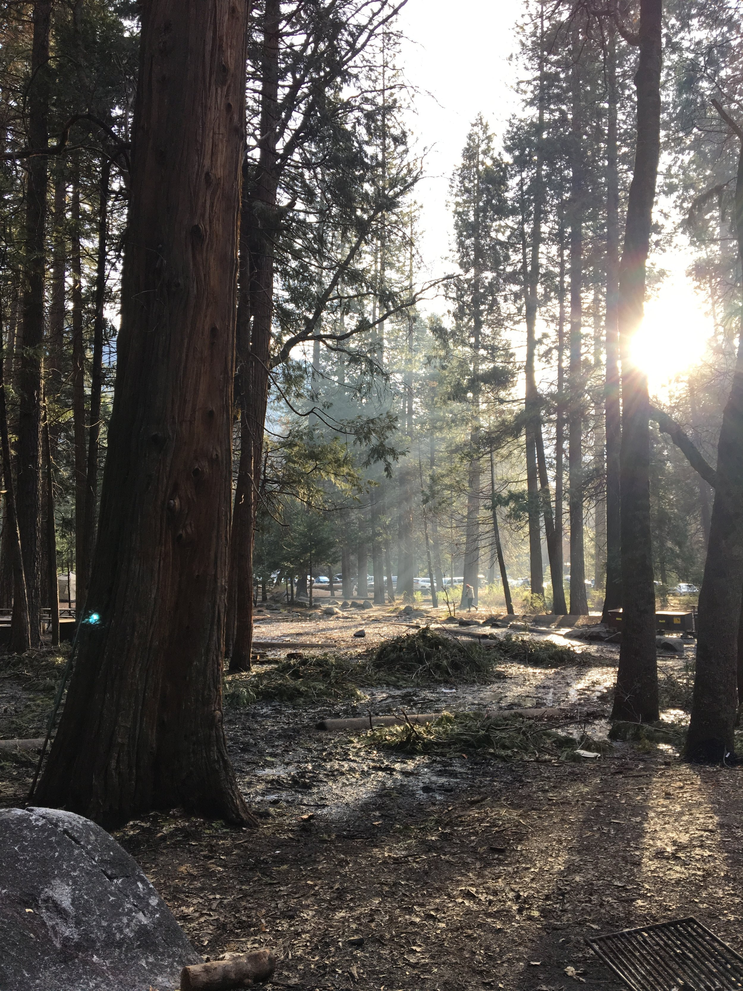 Camp 4 morning views *swoon*
