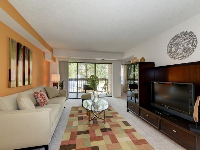 avant-annandale-va-spacious-living-area.jpg