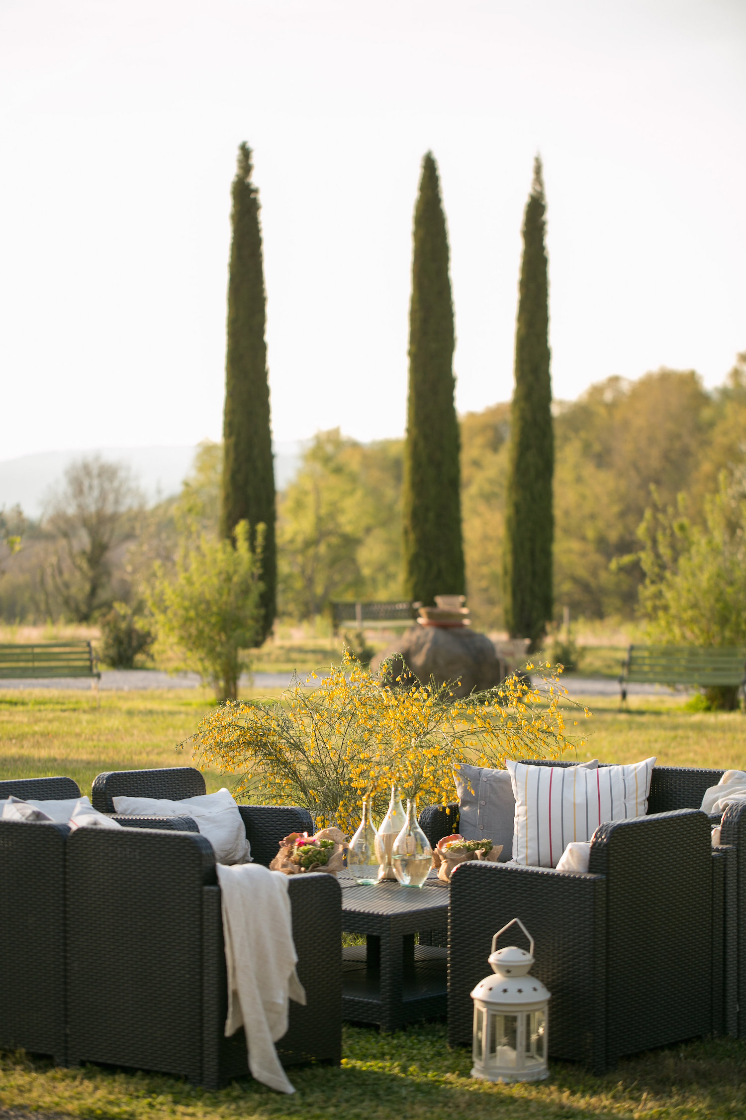lawn_furniture_cyprus_trees.JPG