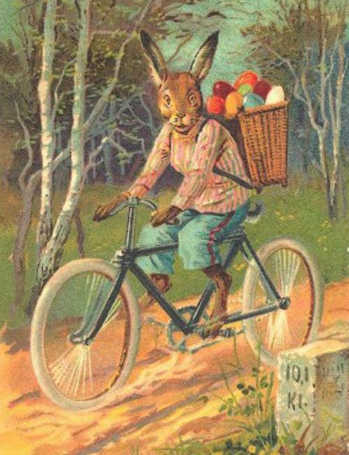 rabbit_on_his_bicycle_delivering_eggs_postcard-p239517846417758129trdg_400.jpg