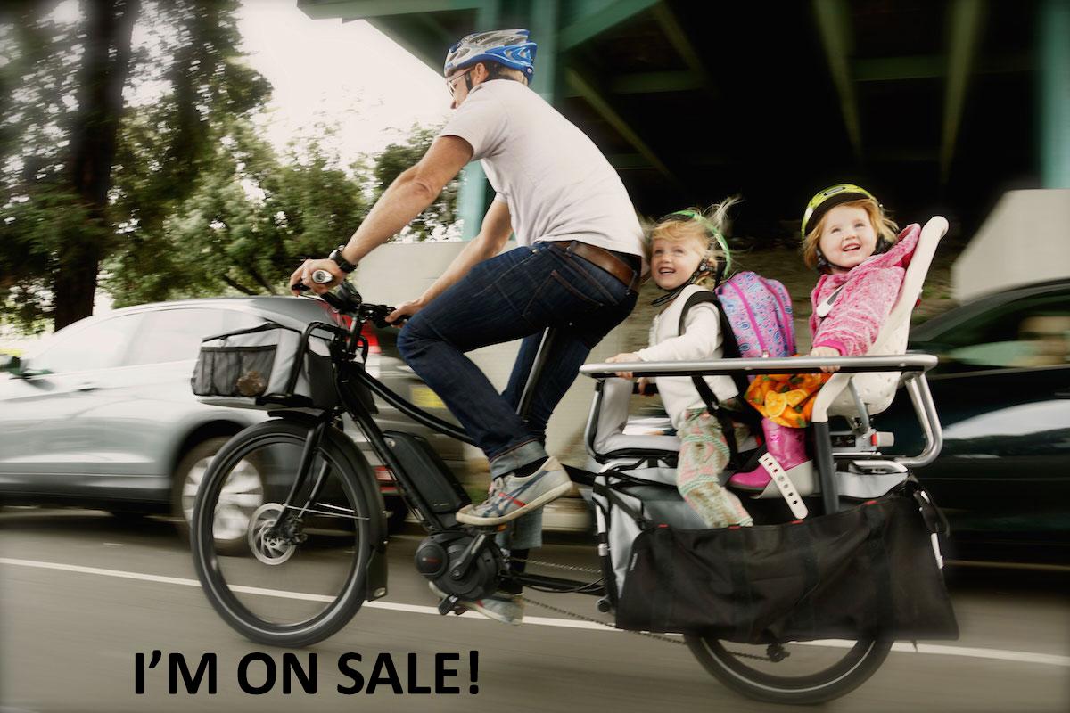 xtracycle-edgerunner-two-yepp-maxi-child-seats-copy.jpg