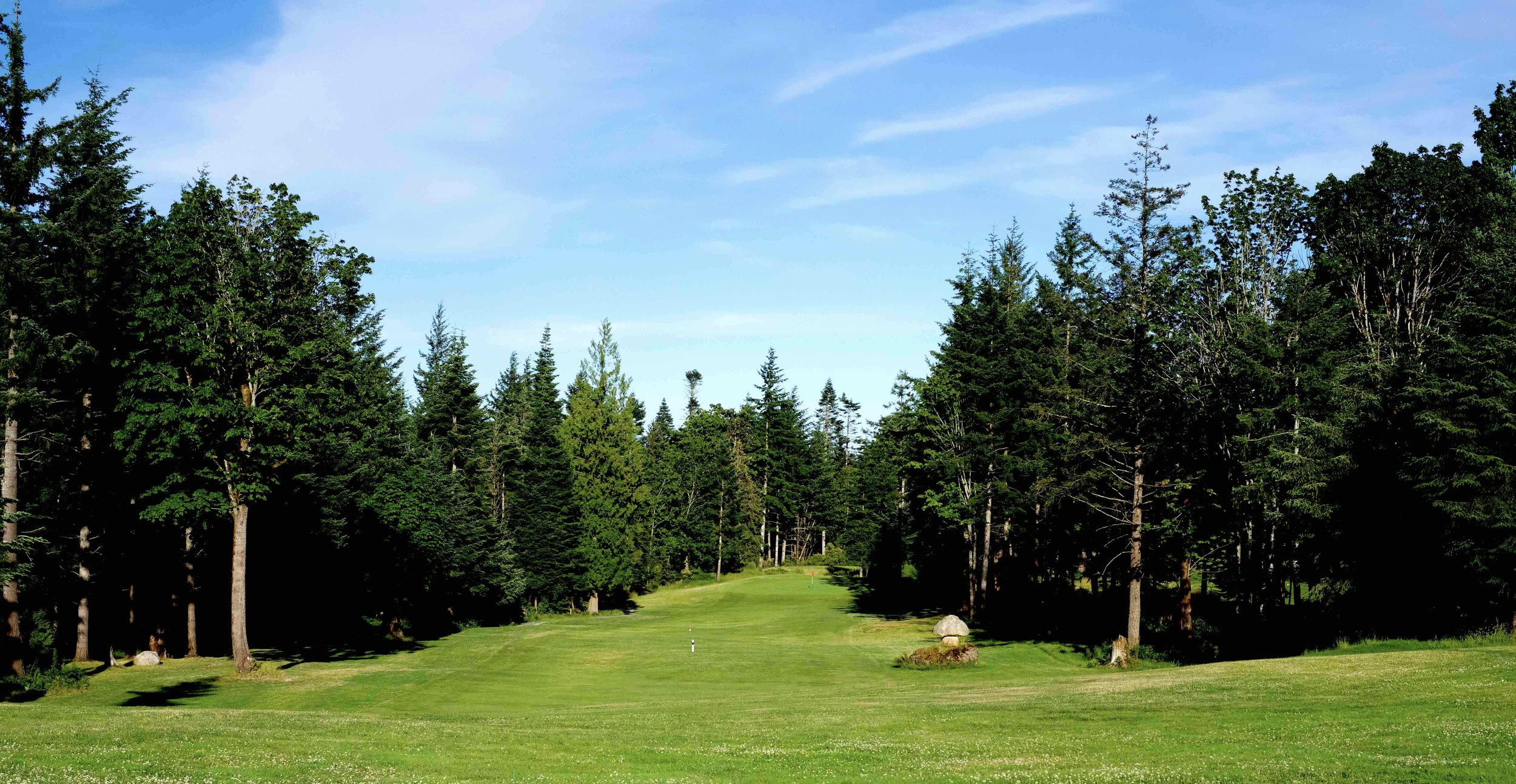 QuadraGolf_Hole1_fairway_DSC00309.jpg