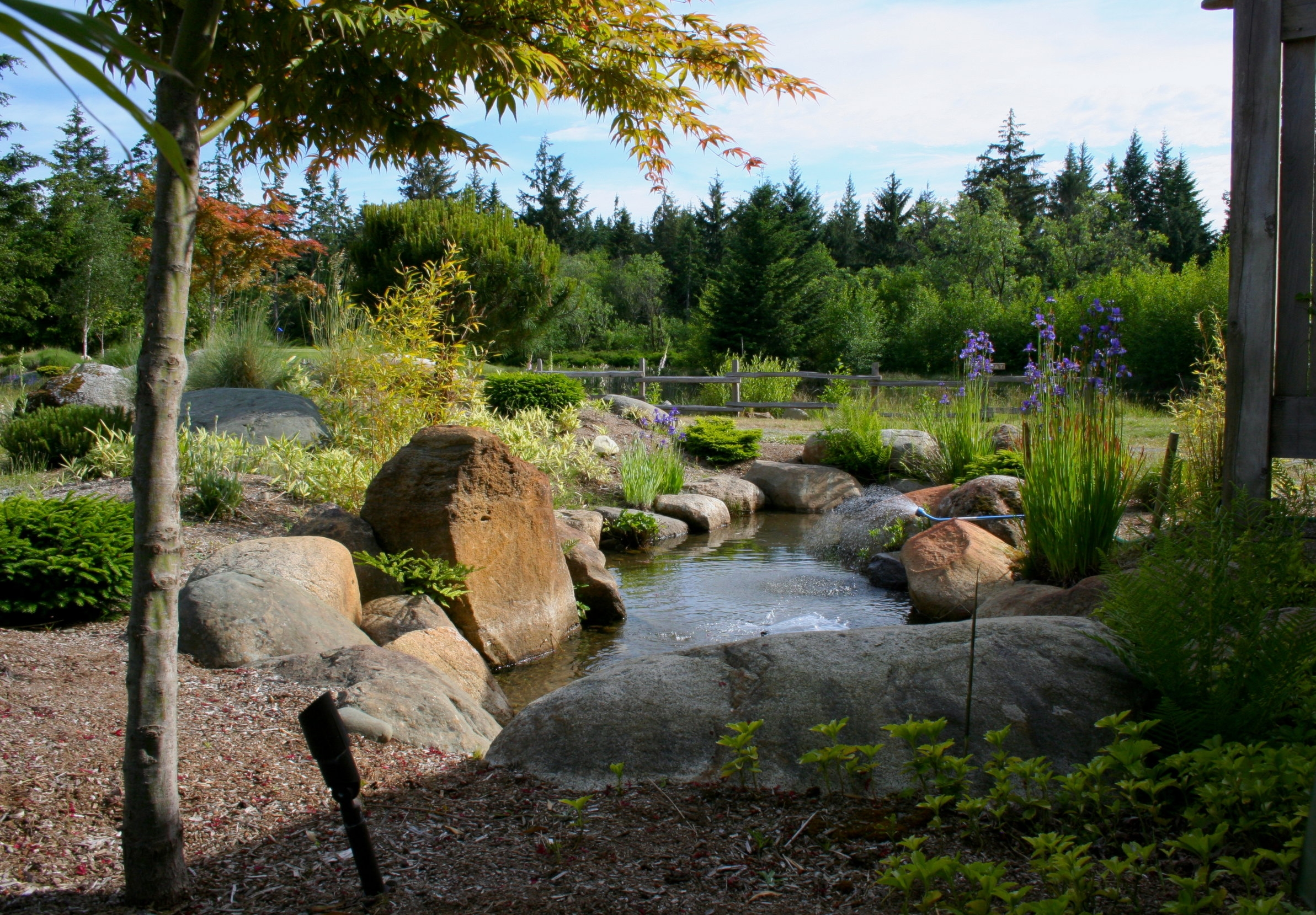 QuadraGolf_small pond_IMG_1547.jpeg
