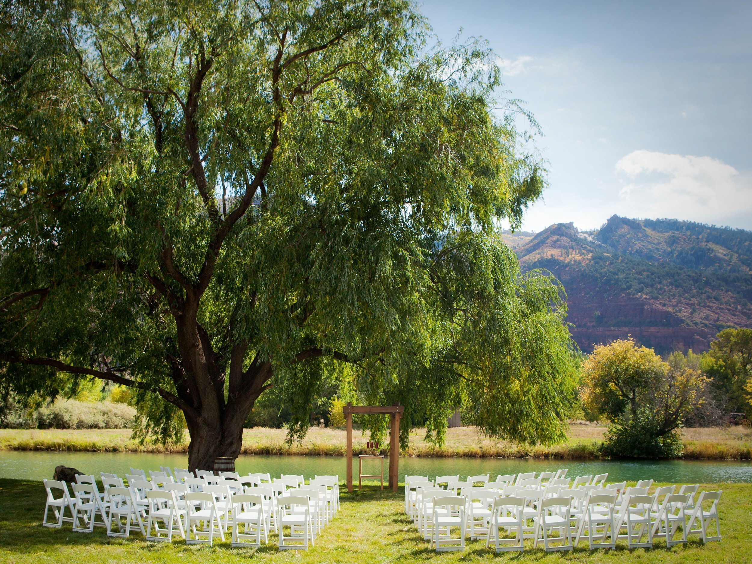A pondside wedding in the warmth of the sun.