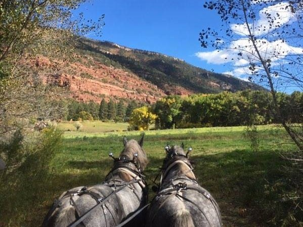 Activities - We provide access to all kinds of fun activities, such as fly fishing, yard games, paddle boating on our private lake, and horse-drawn carriage rides (stagecoach, wagon, and sleigh too!).