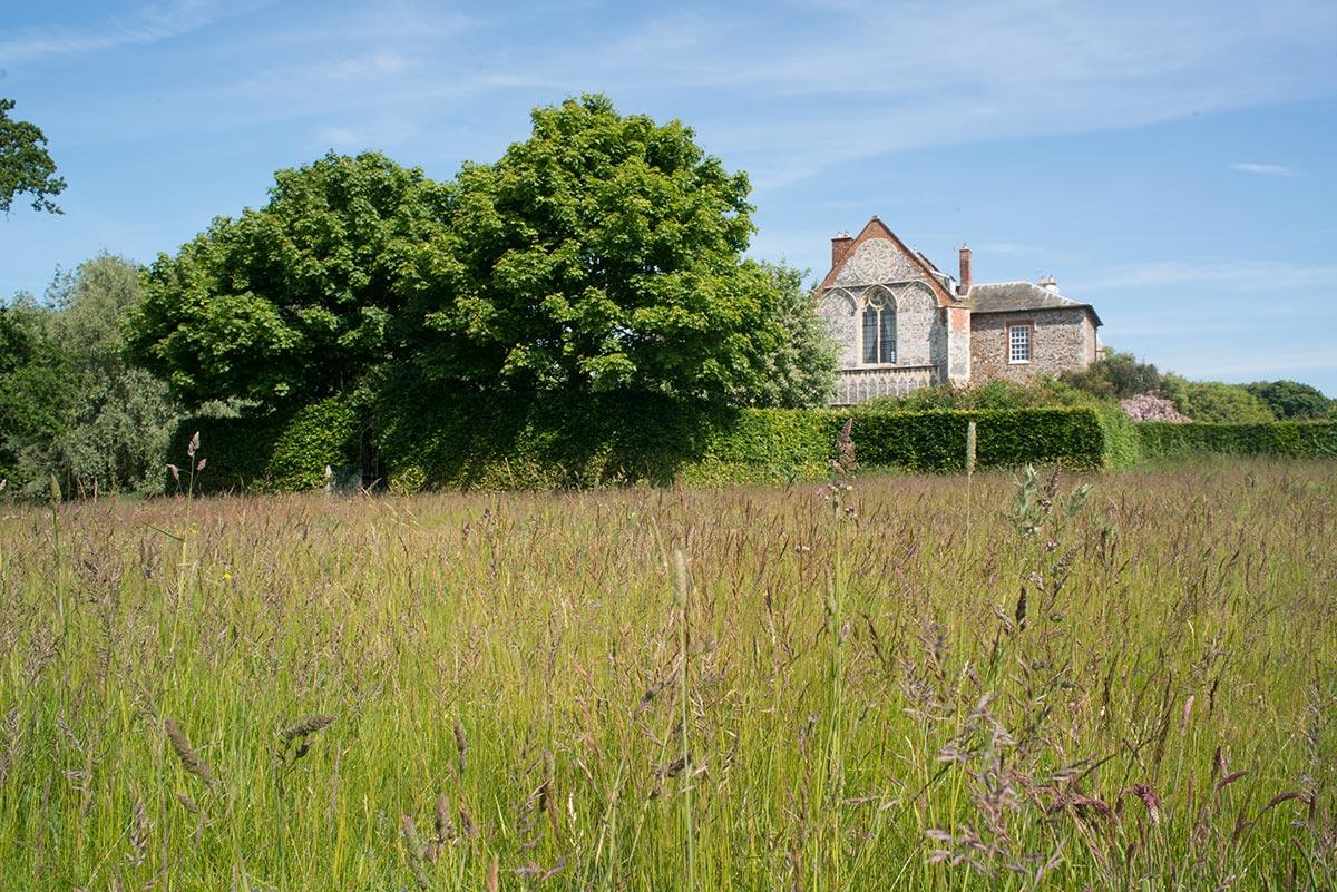 house-grounds8.jpg