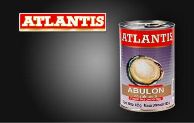 Atlantisweb2017.jpg