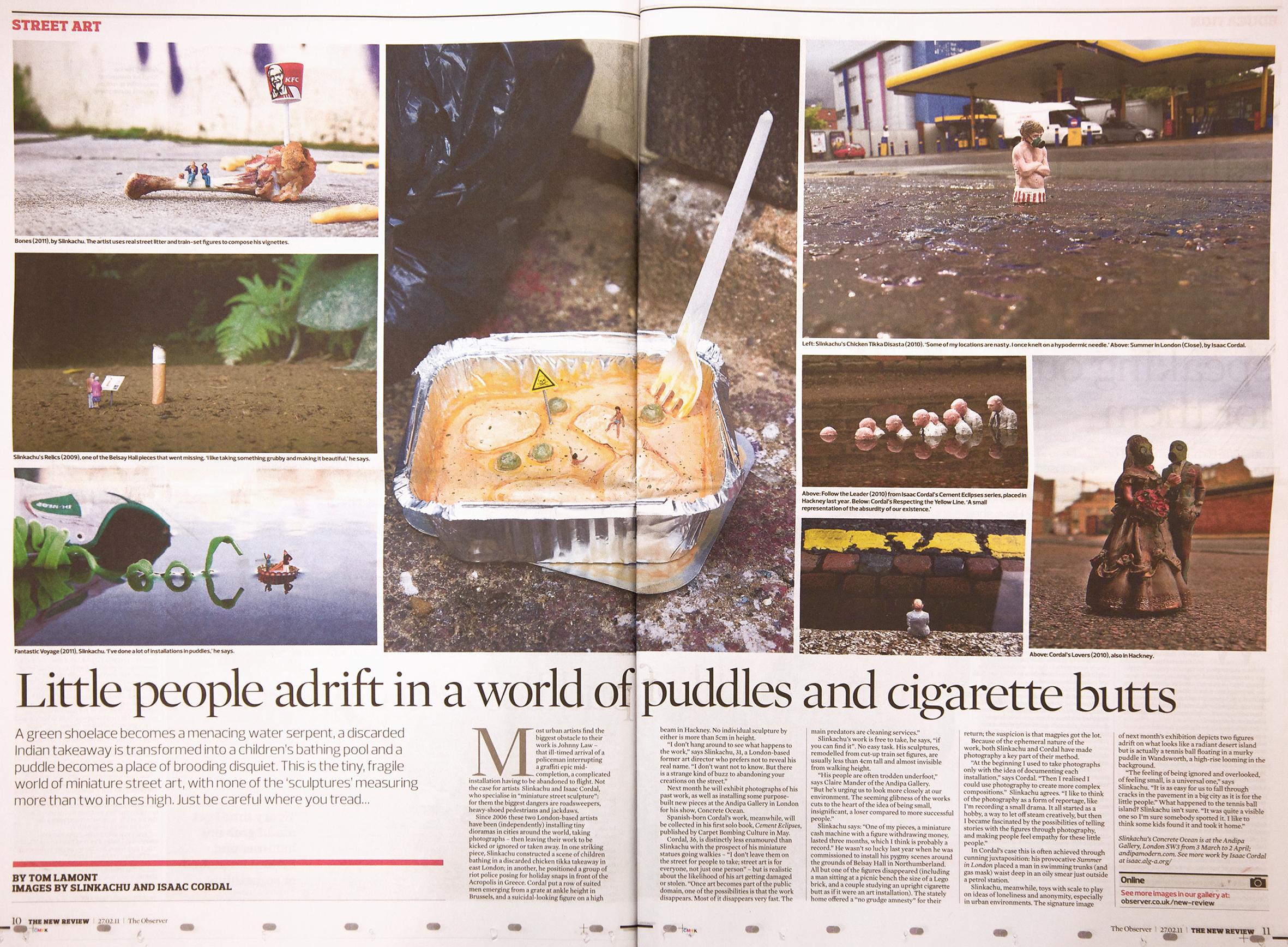 Observer  February 2011