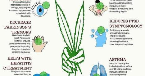 Endocannabinoid science    more fun facts