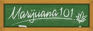 Cannabis classroom