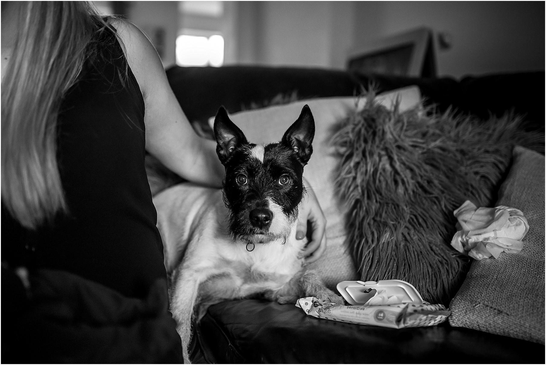 lancashire-family-portraits-documentary-newborn-17.jpg