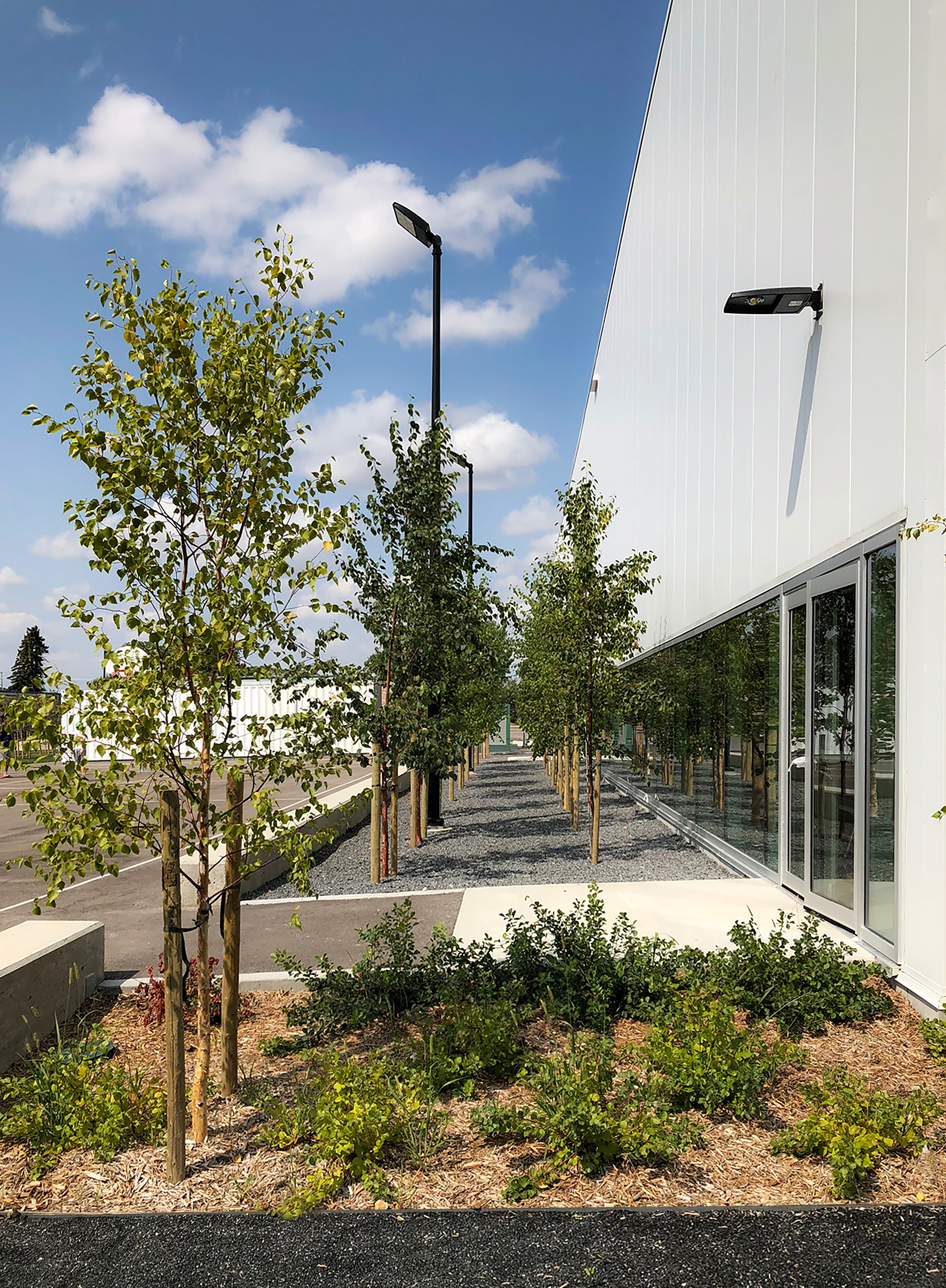 Southeast Collegiate _ Landscape Architecture _ Winnipeg _ Courtyard Design.jpg