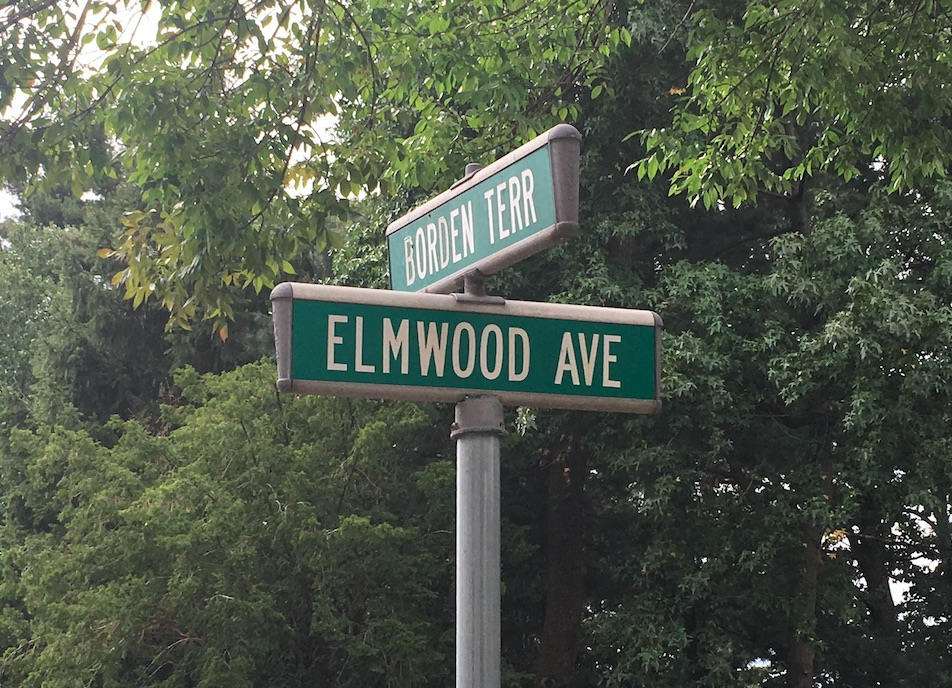 A Trump Piñata, a Treasured School and Political Divisions on Maplewood's Elmwood Avenue – Village Green
