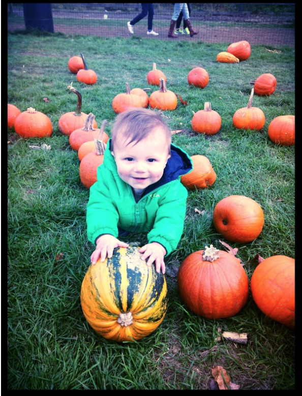 Mirador Licensed Real Estate Salesperson  Nicole Neuman's  adorable son at Harvest Moon