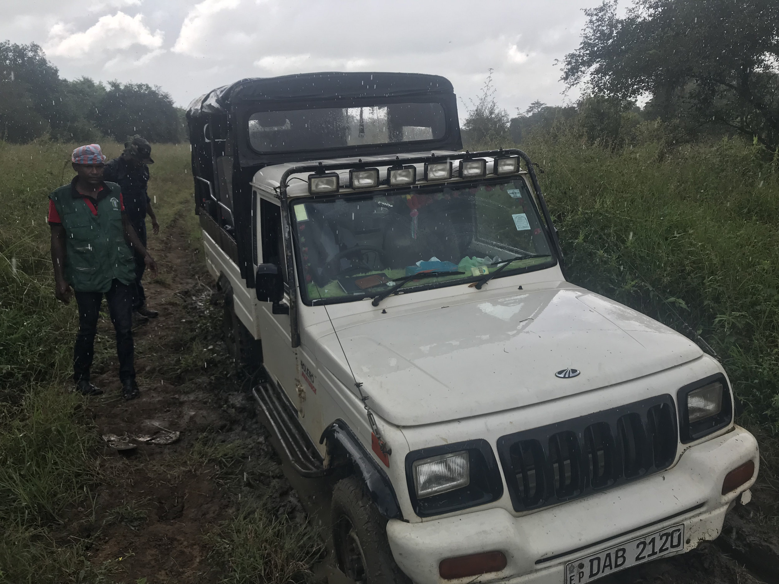 Our stuck vehicle. The rain has just started. Our tracker (Nawa) is worried about his hair getting wet. The solution? Plastic bag on the head.