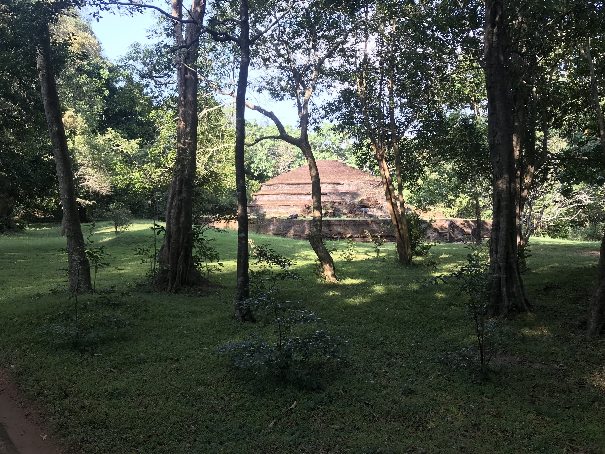 A dagaba (stupa) in the forest reserve where the primate project takes place.