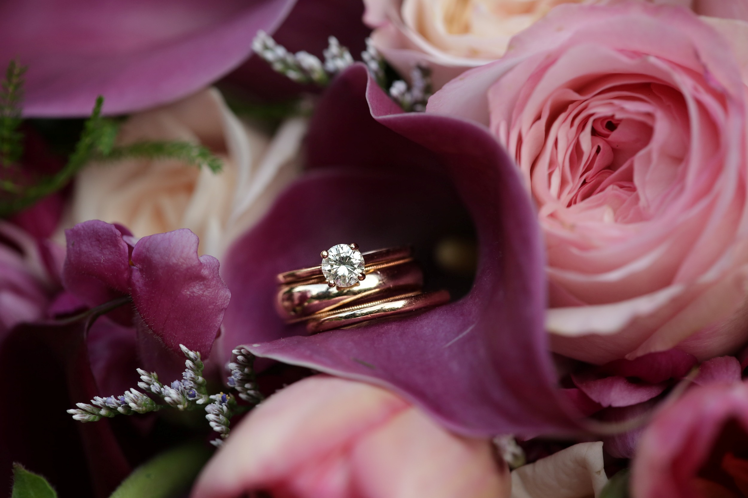 wedding rings and orchads