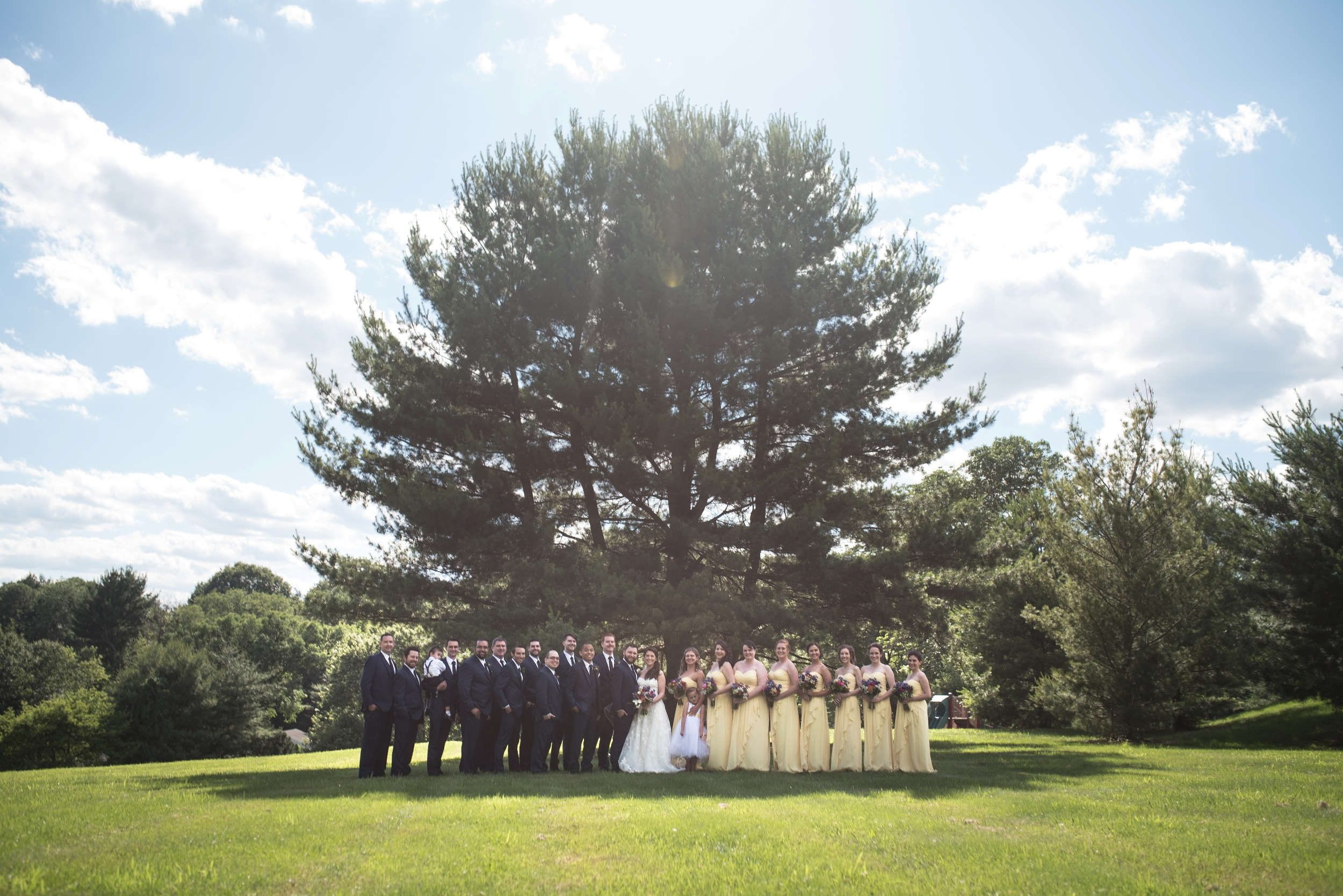Large bridal party at Mendenhall Inn in Media