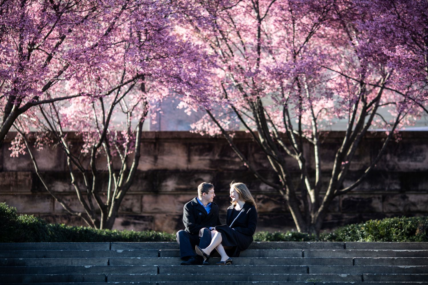 art museum cherry trees engagement sesison