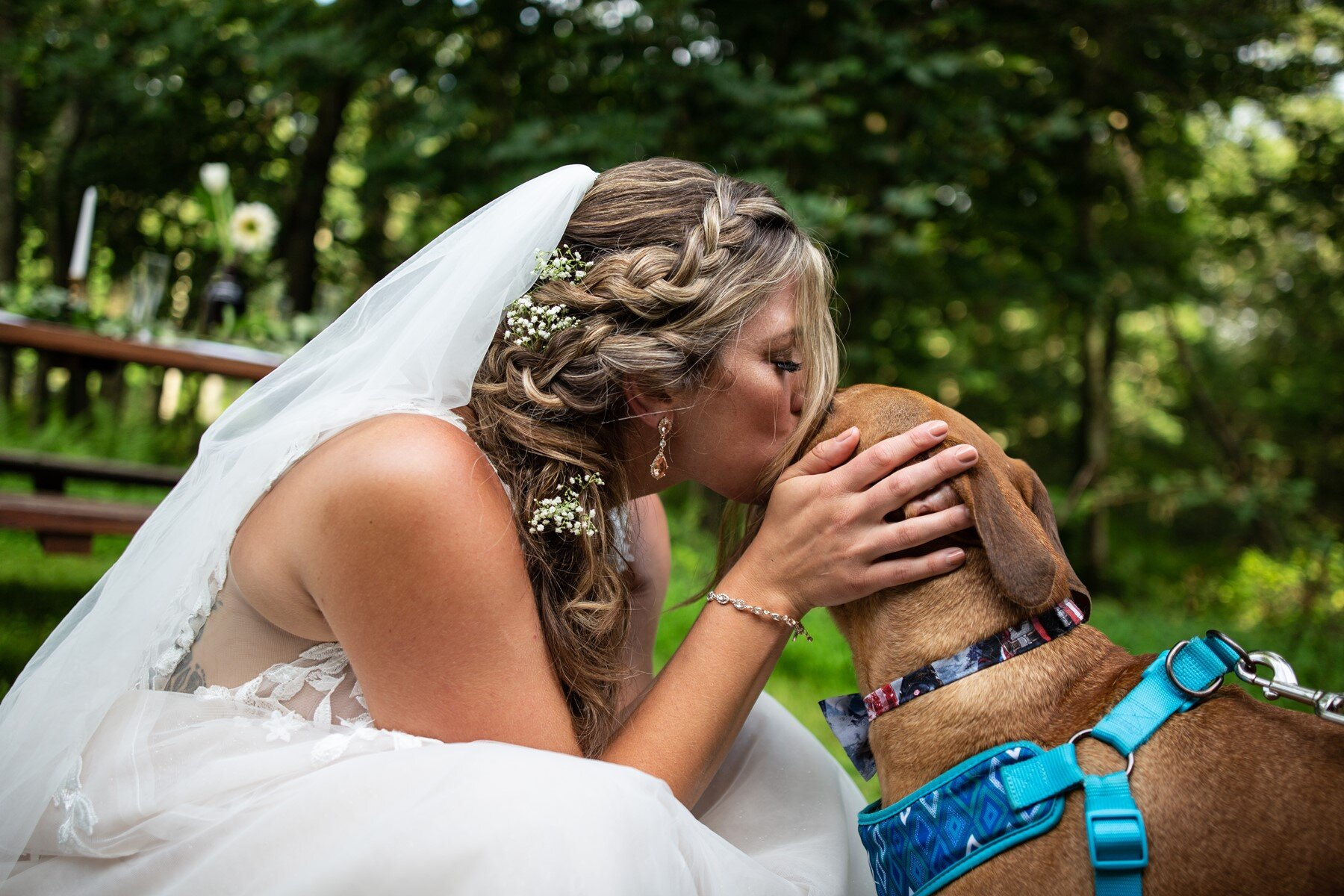bride and puppy in the mountains