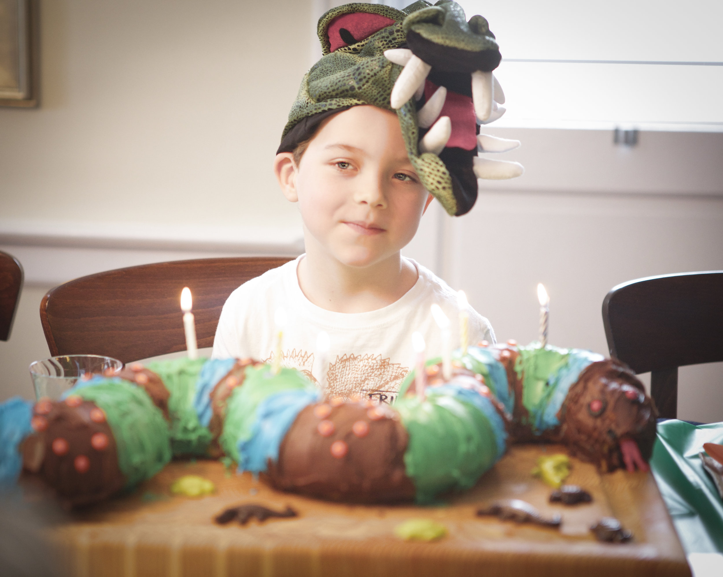 Birthday Boy1 ©2015 Julia Maloof Verderosa_7395.jpg