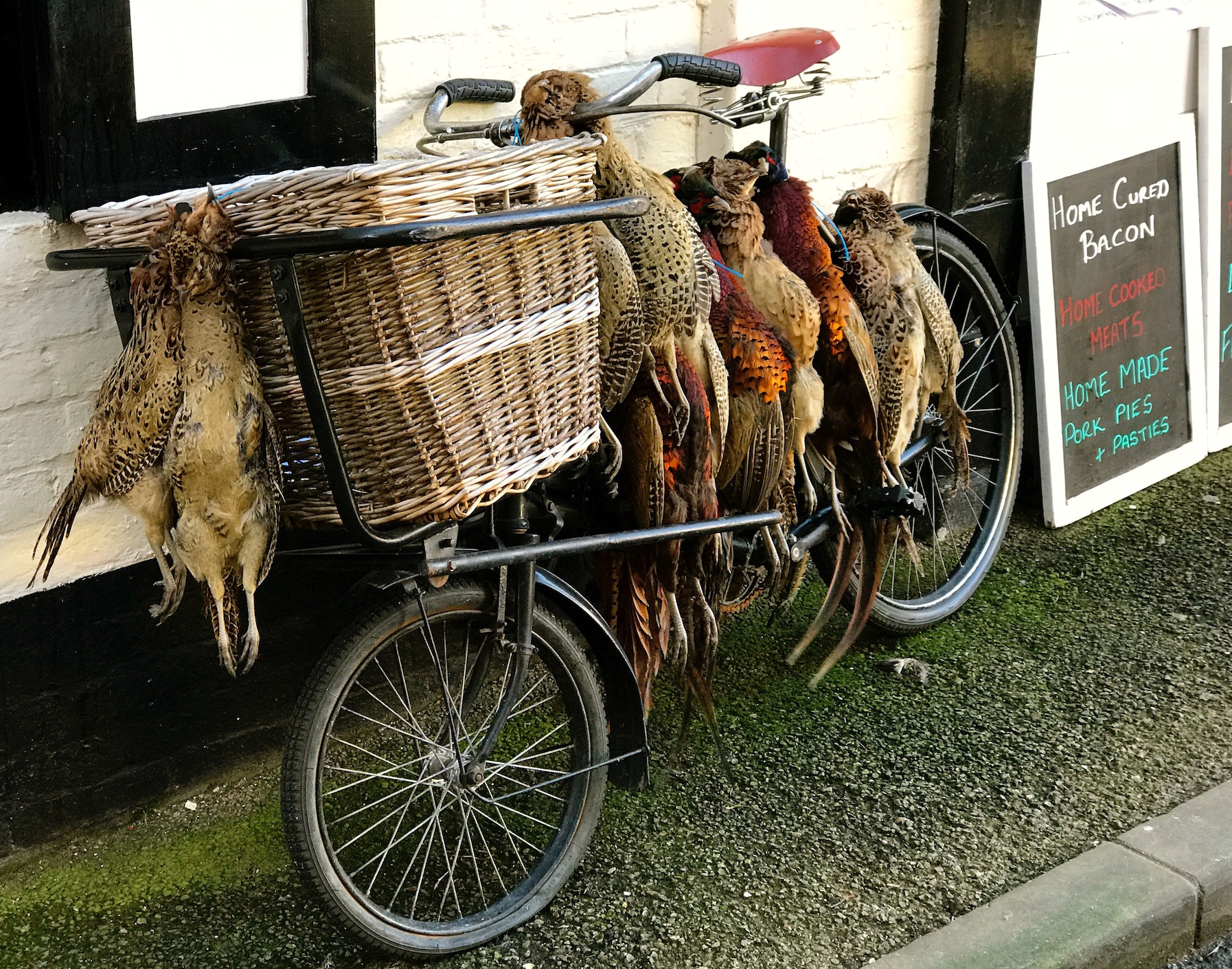 Locally shot pheasants, Ludlow.jpg