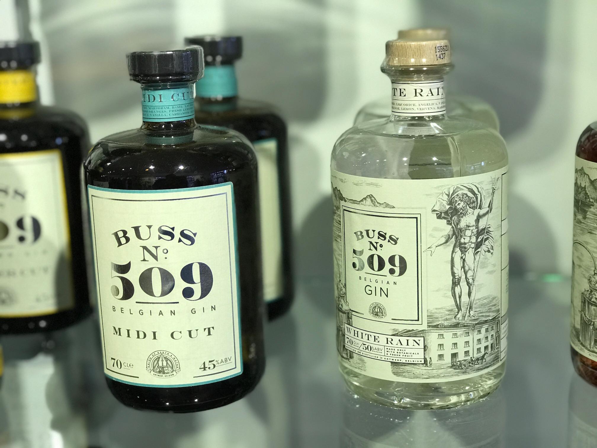 Gins, Taste No1, Ludlow.jpg
