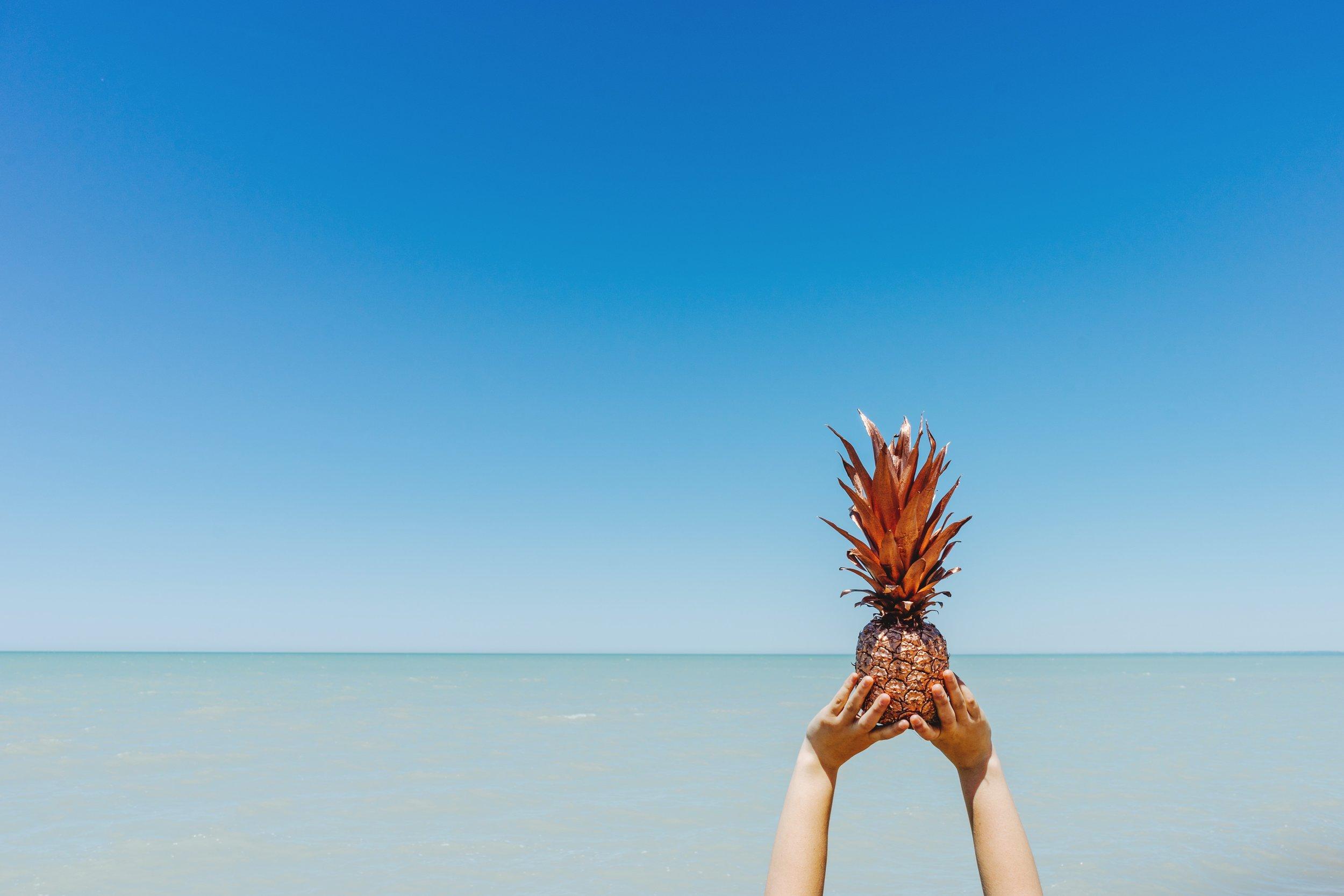 pineapple-supply-co-120785.jpg