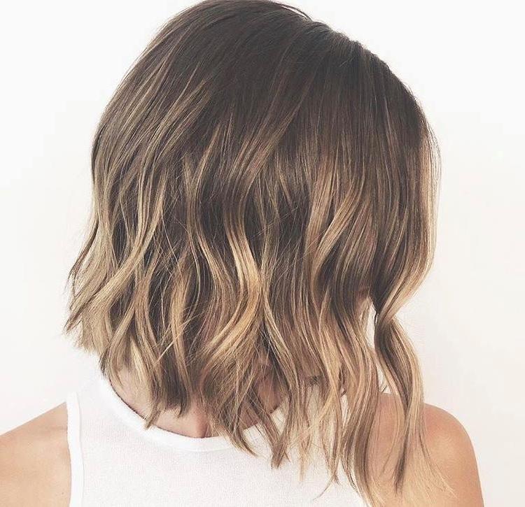 Boulder Hair Salon Freebird Beauty Shop