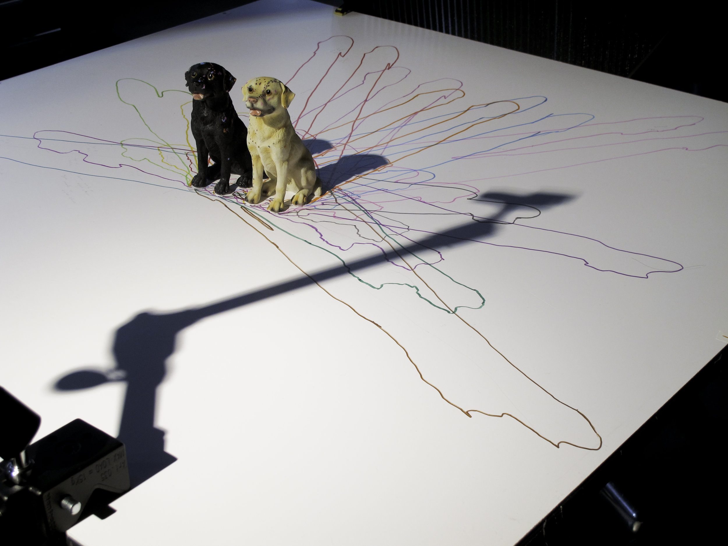 Work-in-progress Documentation, 2010  of plastic dogs on heliodon.