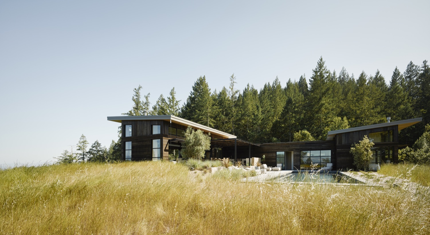An overview of the home between the forest and the restored grassland