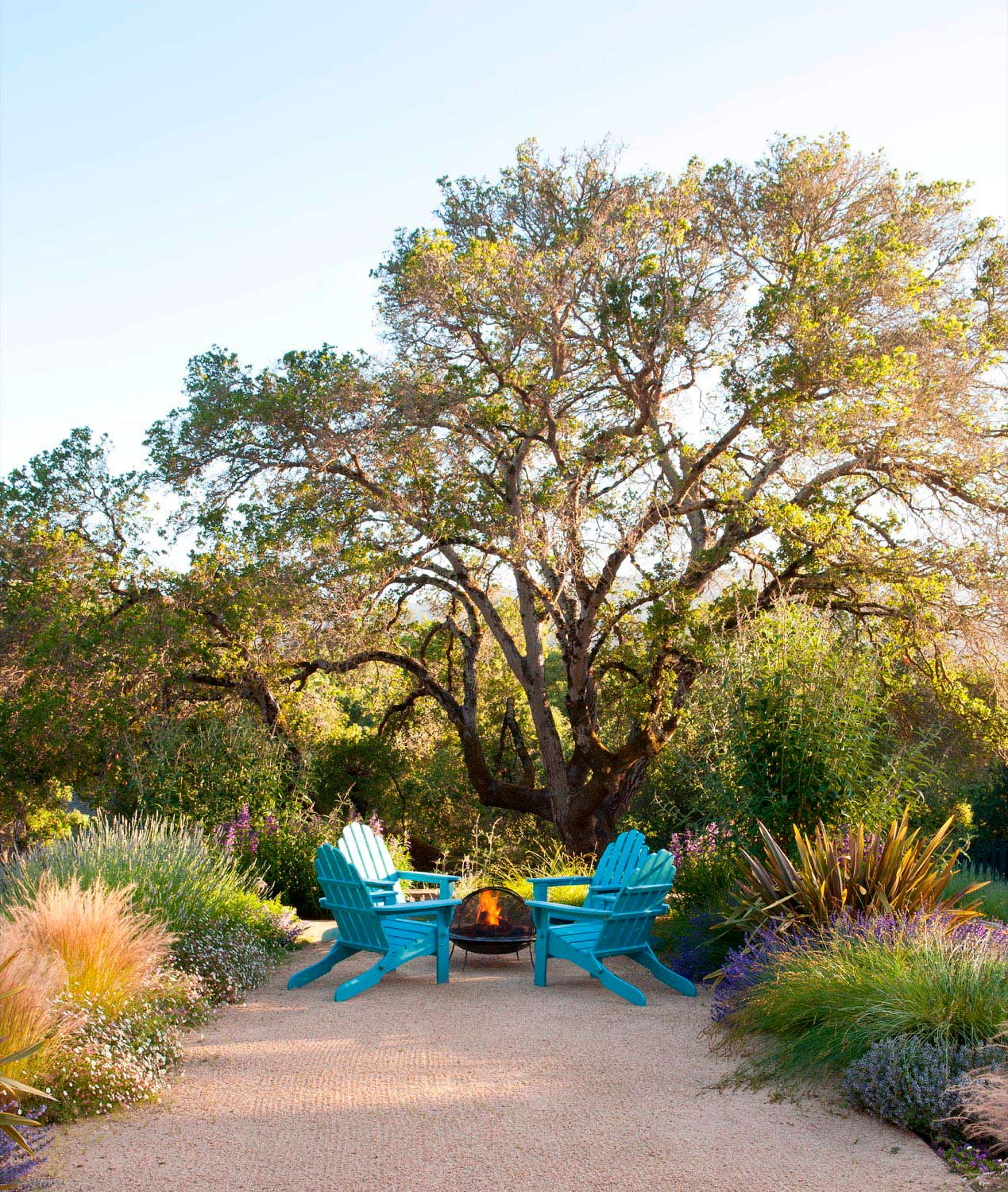 A firepit seating area is arranged under a sweeping oak tree, surrounded by soft, low-water colorful flowers and grasses.