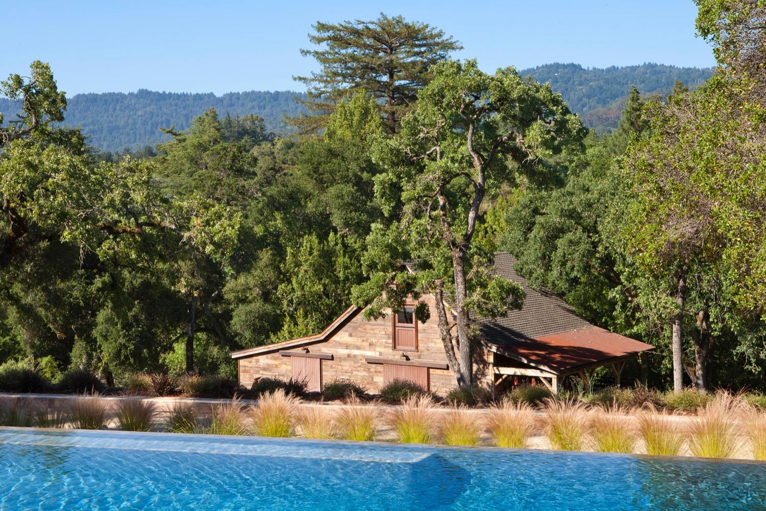 The renovated barn is seen over the pool and native grass plantings.