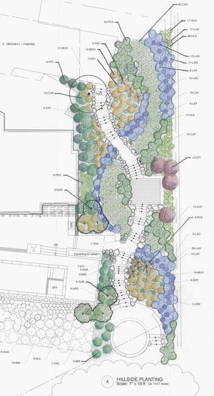 A conceptual plan shows the brushstroke-like swaths of color.