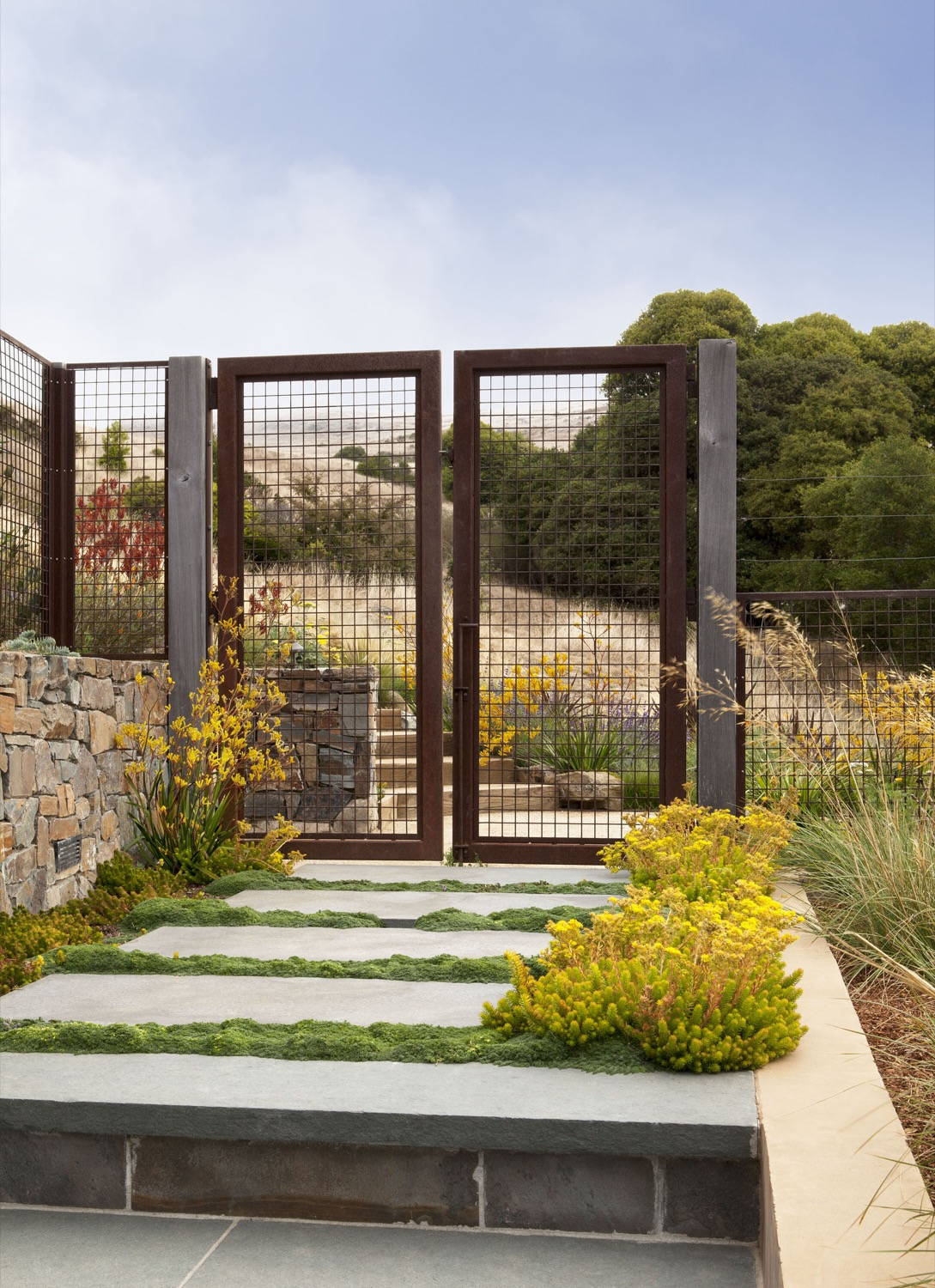 Bright yellow plantings create a visual connection through a gate. Stone pavers are softened with bands of moss.