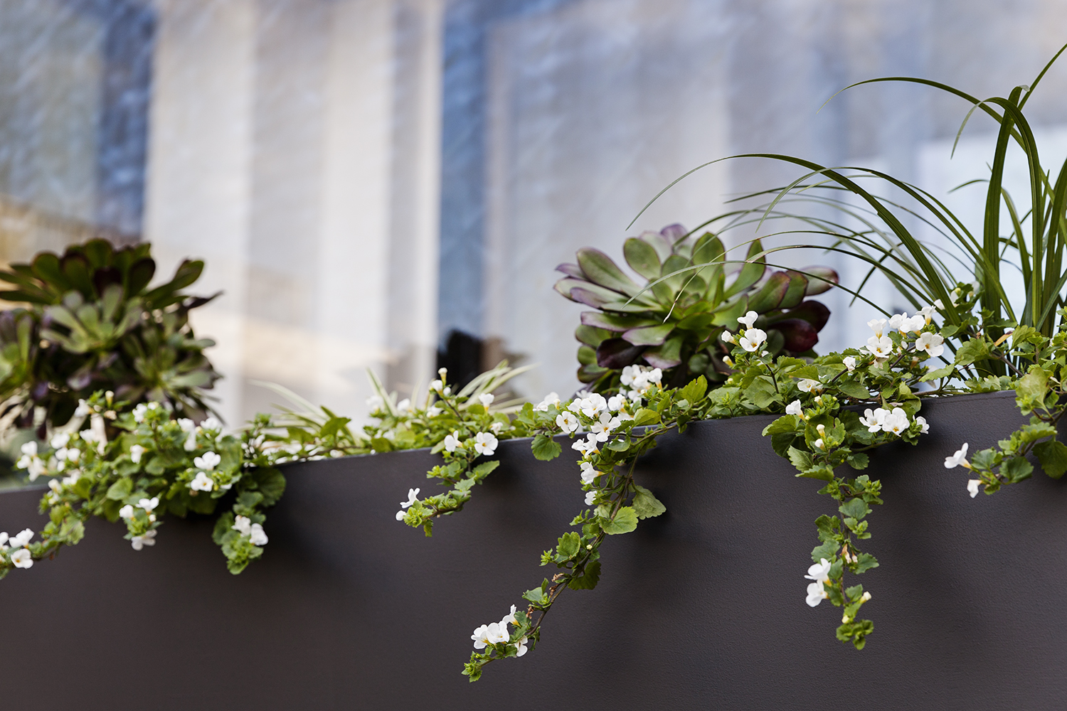 A detail photo shows spring green plantings and a powder-coated metal planter.