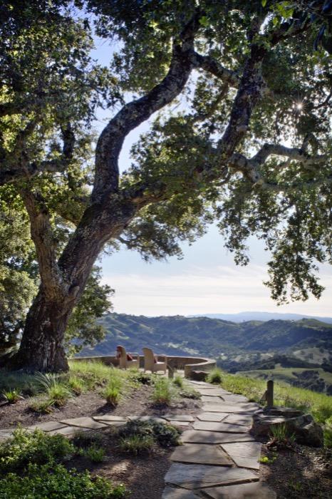 View Finder By Arterra Landscape Architects