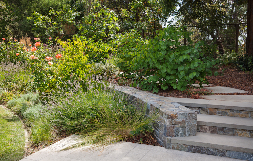 Menlo Park Family Home by Arterra Landscape Architects Photo by Michele Lee Willson