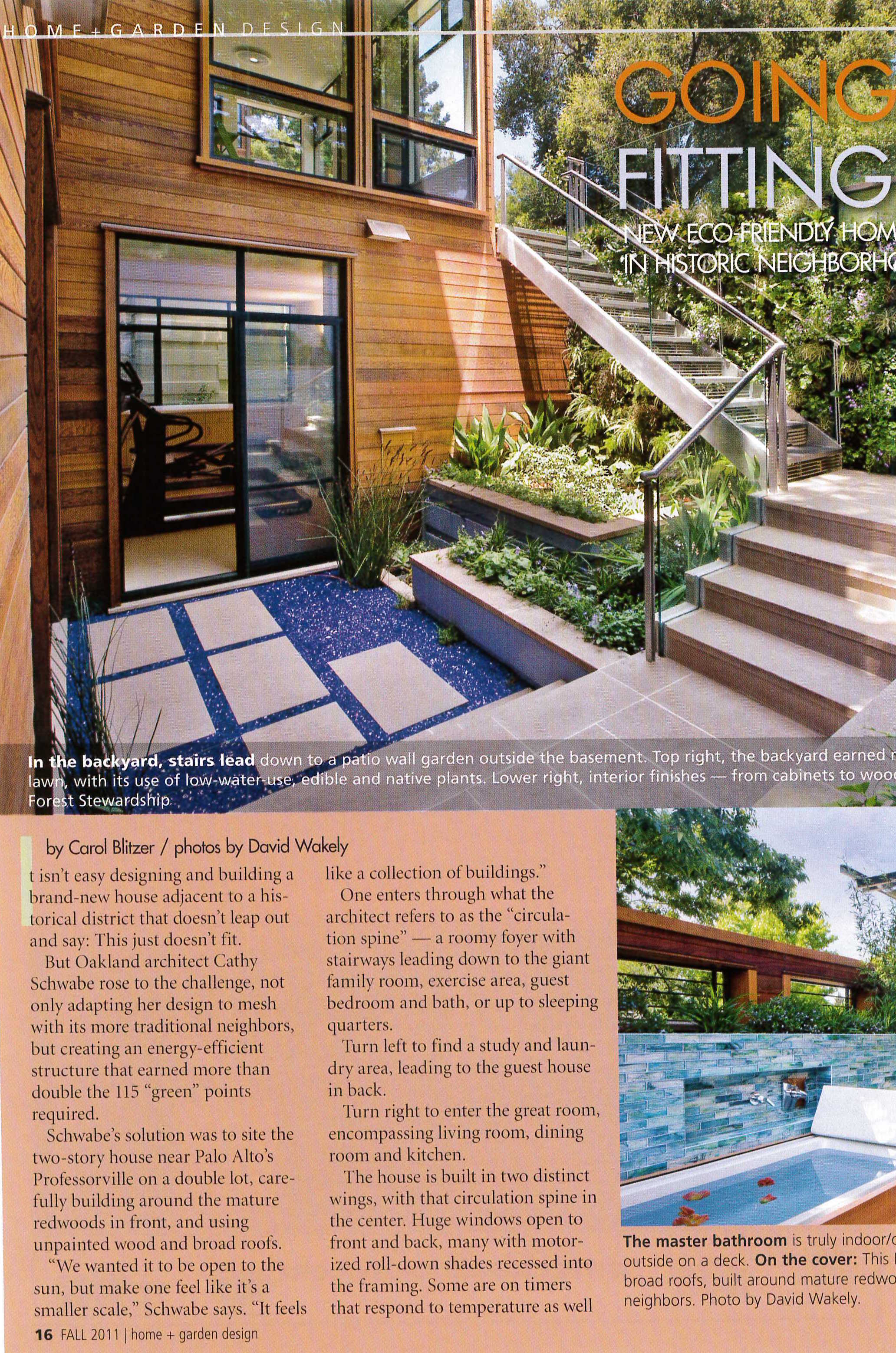 A lightwell with a vertical garden and a rooftop outdoor shower and bath are tied together with accents bright blue.