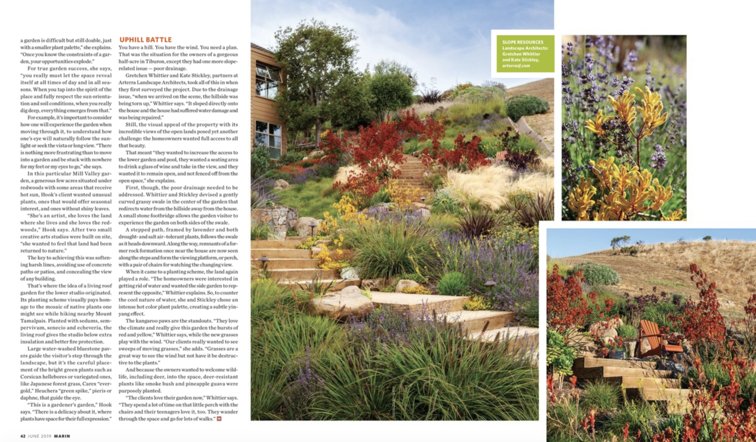 A magazine spread showing Arterra's project, The Painterly Approach, with a staircase winding through native and low-water plantings.