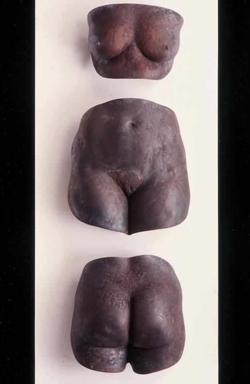 Torso of a Princess  - 56 X 40 X 8 in cast bronze, hydrocal & handmade paper