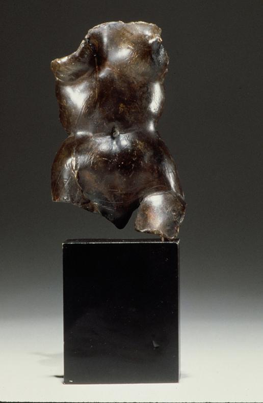 Torso  - 15 X 6 X 5 in cast bronze