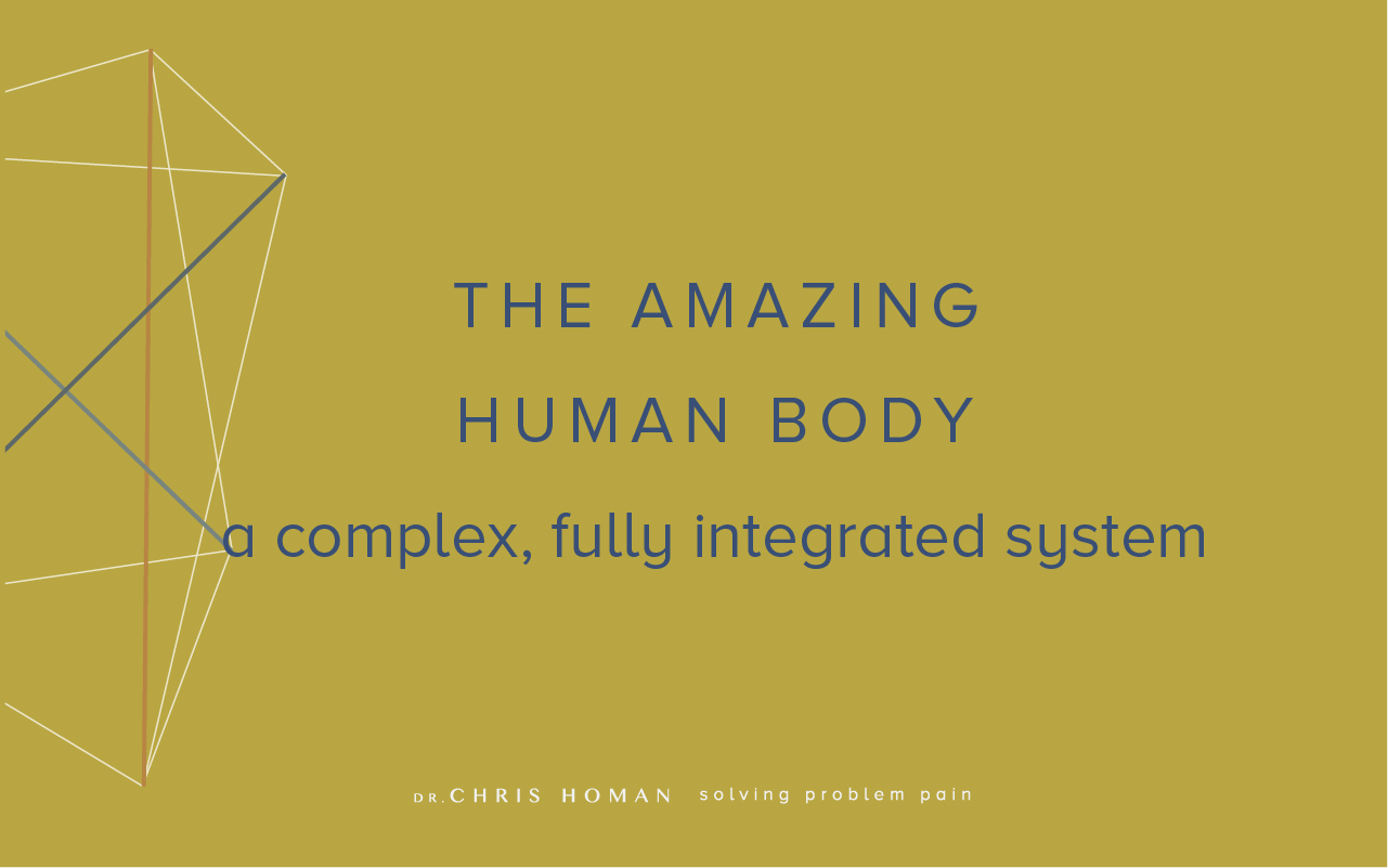 The-human-body-complex-integrated-system