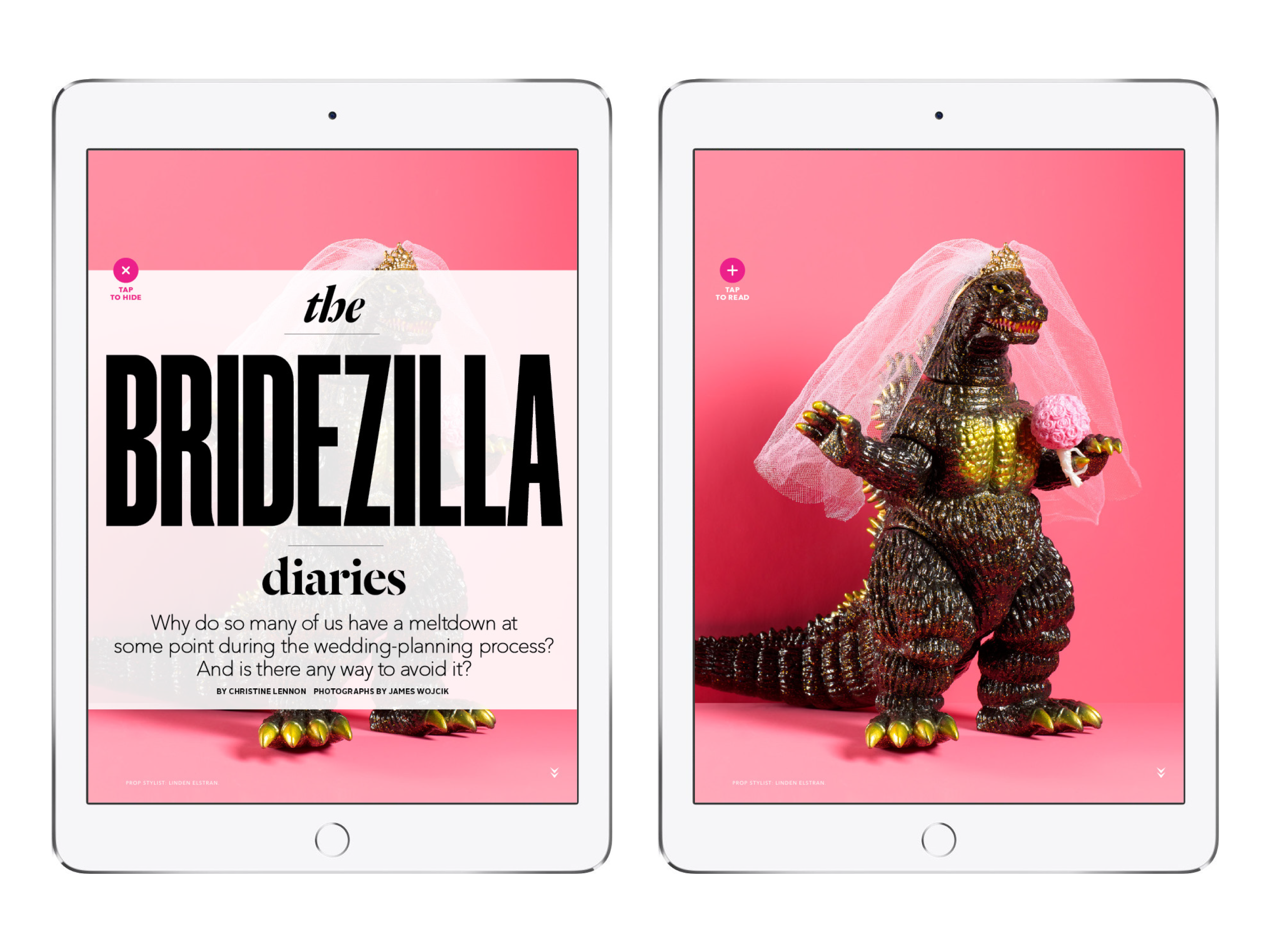 Brides for iPad 6.png