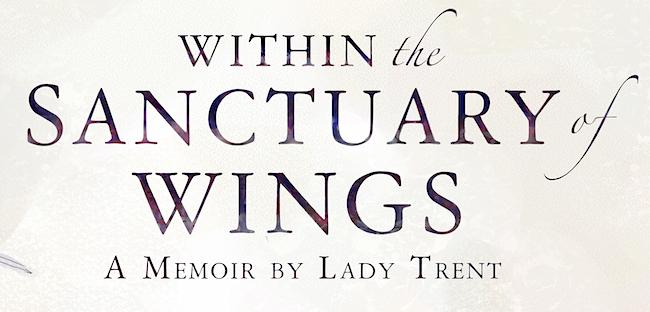 sanctuary-wings_det04.jpeg