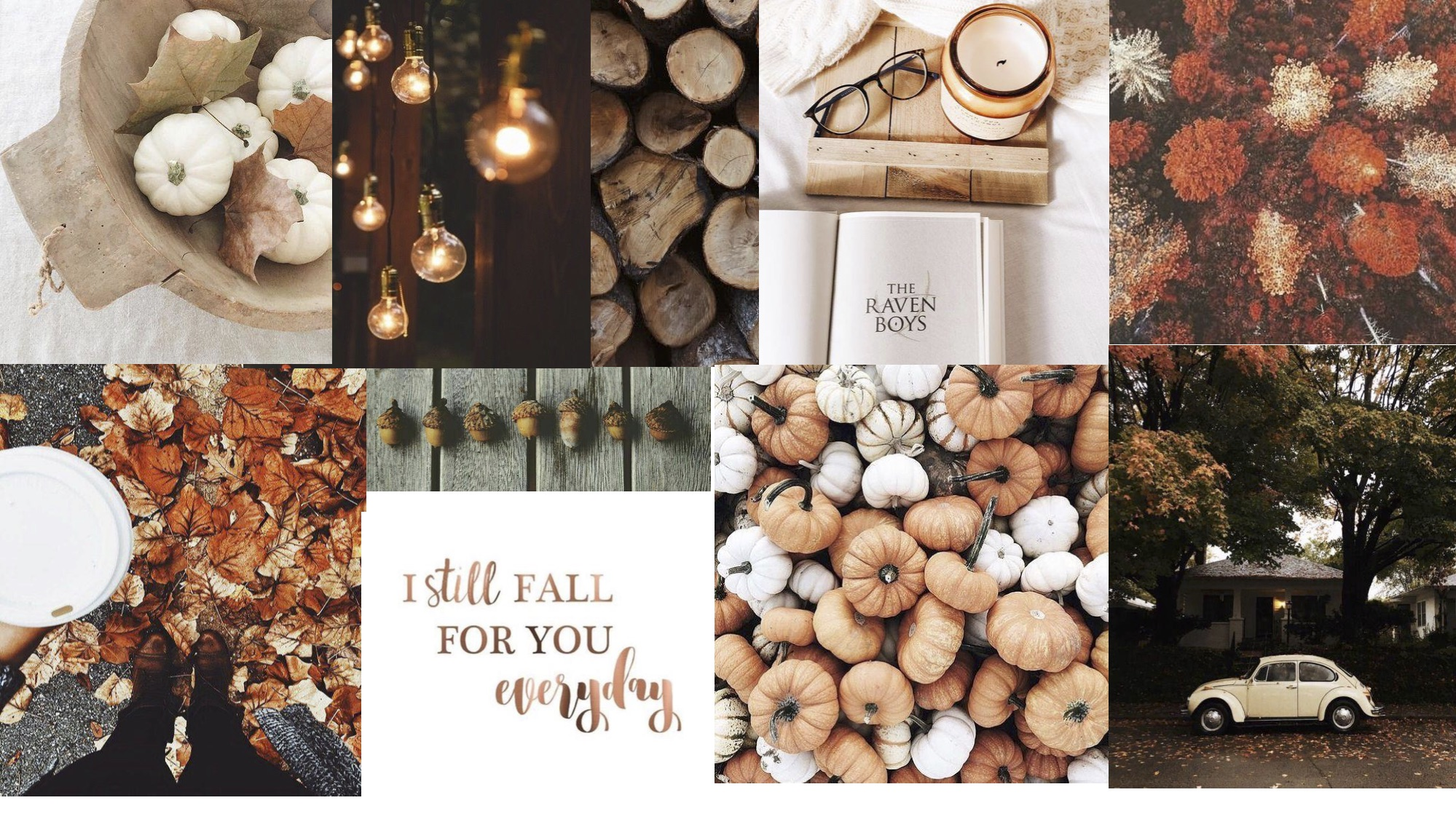 Fall Mood Board-3.jpg