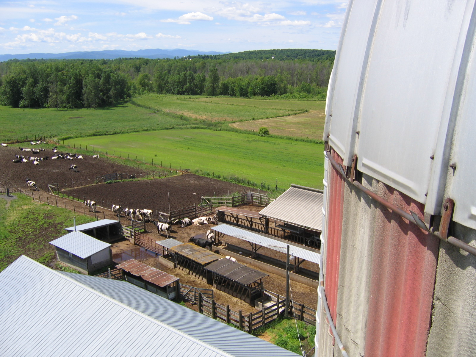 From top of Silo.JPG
